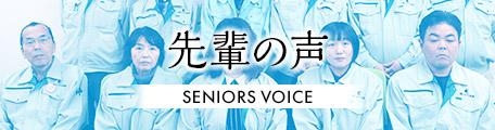 voice_ban